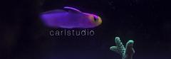 Helfrichi Dartfish
