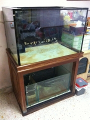 Fish Tank FOC