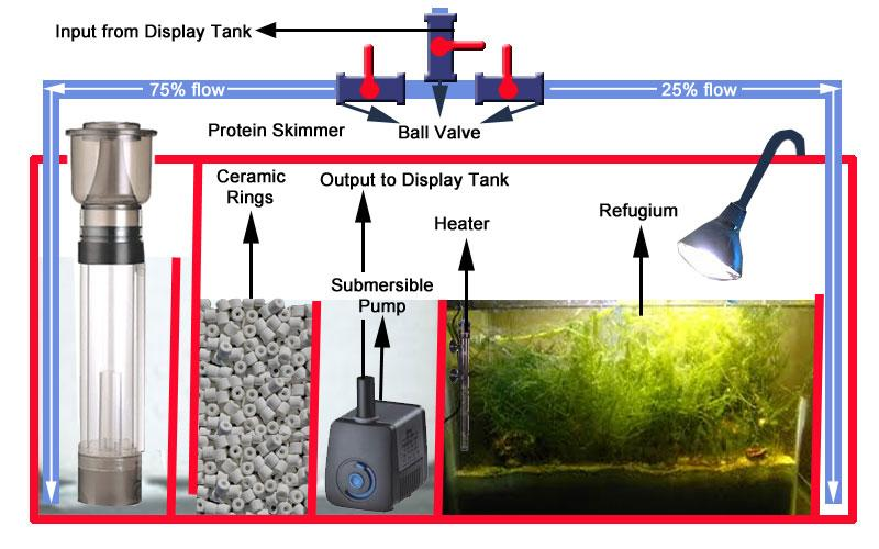Sump Tank Design Setup Of A Marine Tank Singapore Reef
