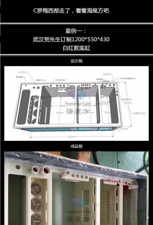 ADF4BF9A-F073-4D66-9D7A-0D775845F9BF.jpeg