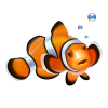 Battling red slime algae - last post by Clownfish Forever