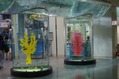 Public Aquarium Around the world