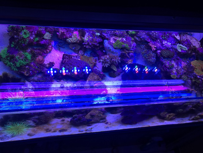 fts top down with t5.JPG