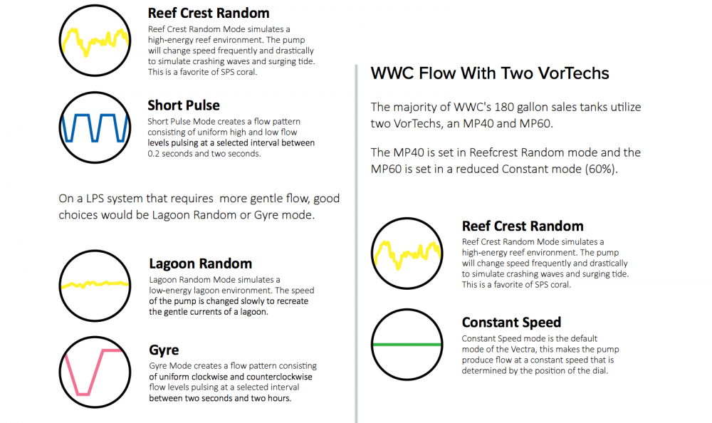 World_Wide_Corals_CoralLab.pdf20.png