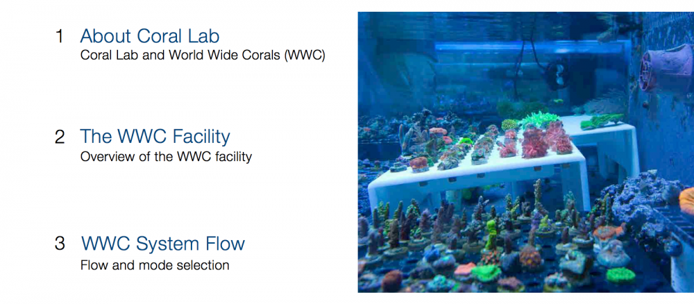 World_Wide_Corals_CoralLab.pdf3.png