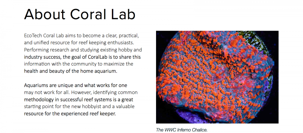 World_Wide_Corals_CoralLab.pdf5.png