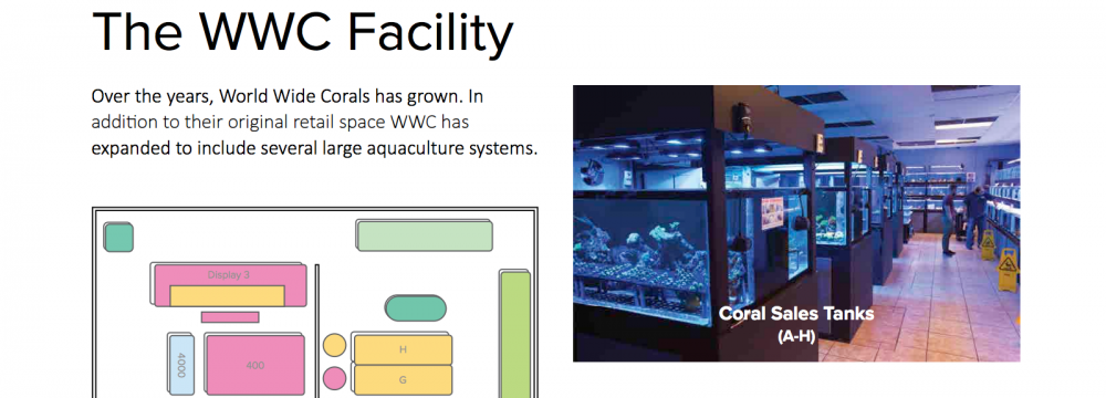 World_Wide_Corals_CoralLab.pdf8.png