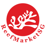 ReefmarketSG