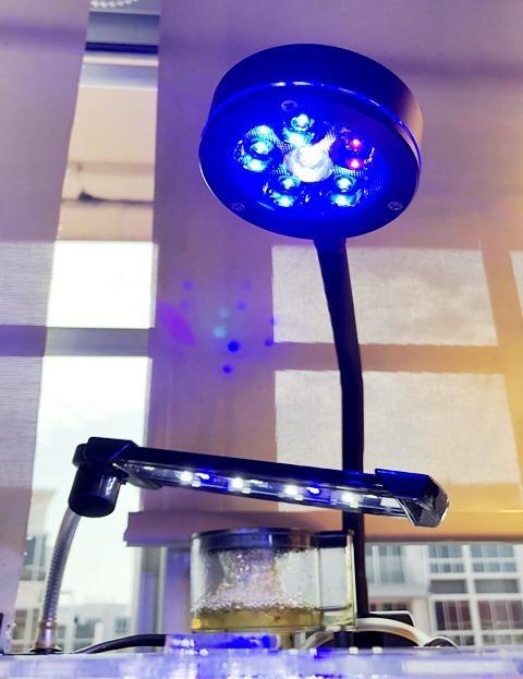 EQ 18W LED WL.jpg