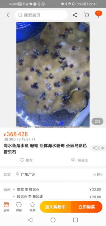 Screenshot_20210105_224552_com.taobao.taobao.jpeg