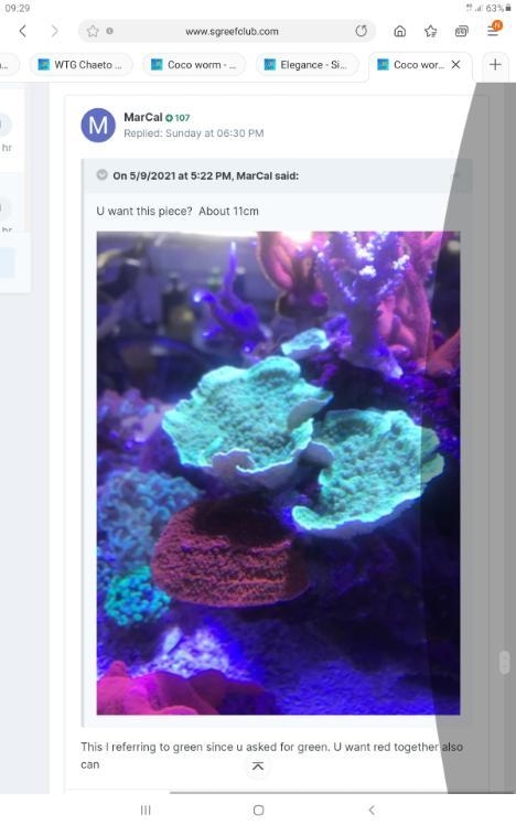 Screenshot_20210511-092902_Samsung Internet.jpg